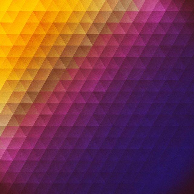 36_Circuit_Bloom_cover