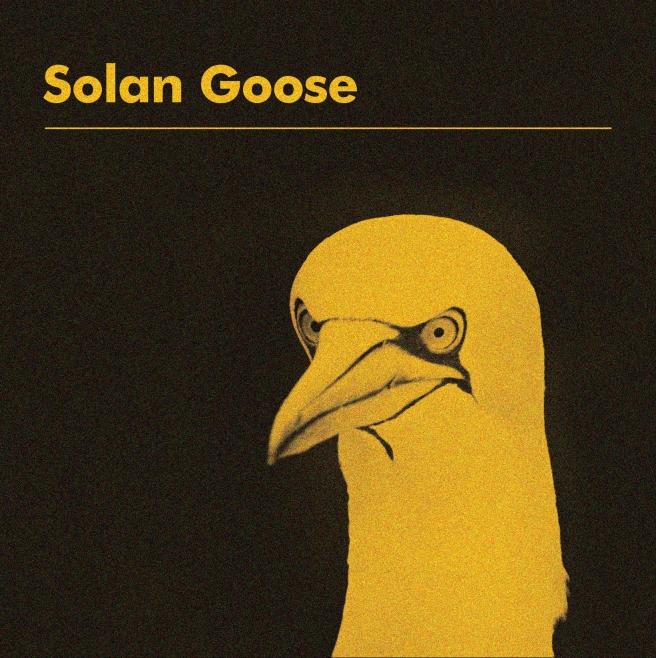Solan_Goose_Cover