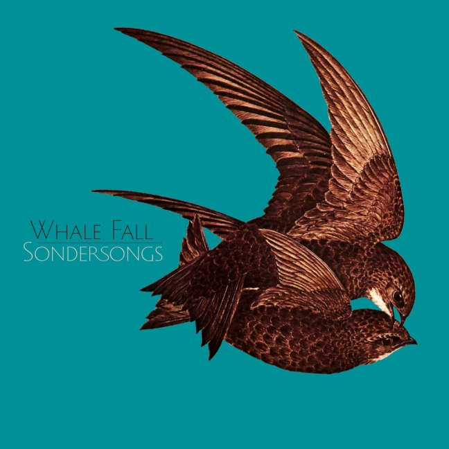 Whale_Fall_Sondersongs_cover