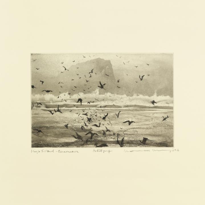 Solan Goose (Murmuration)_DIGITAL