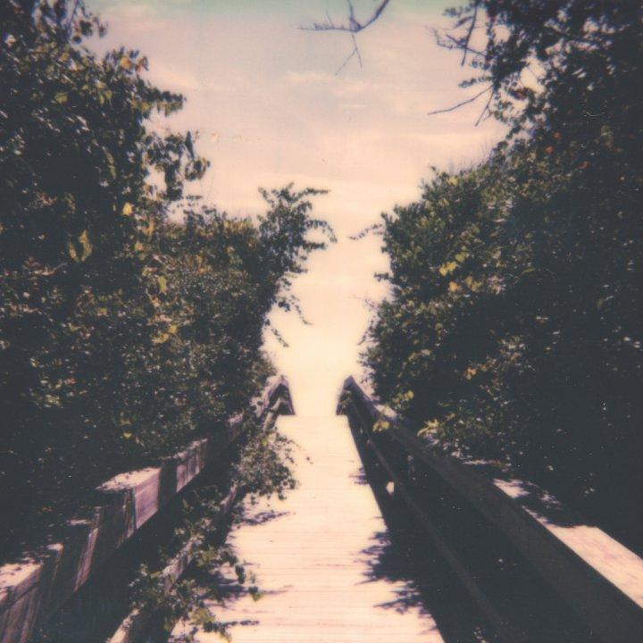 JM_Coquina_Dose_cover