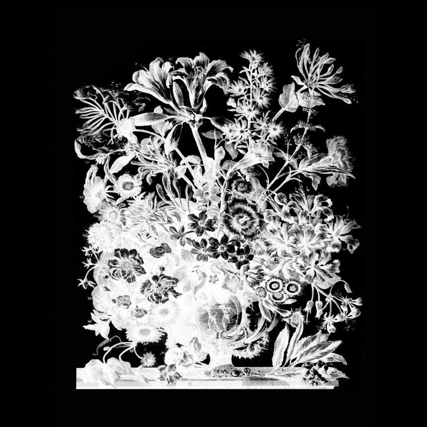 Sontag Shogun Floreal EP cover